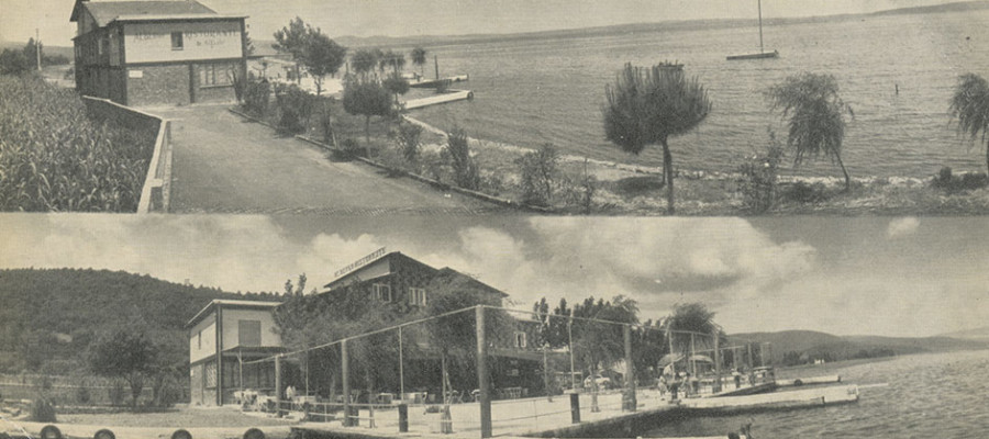 Dal-1960